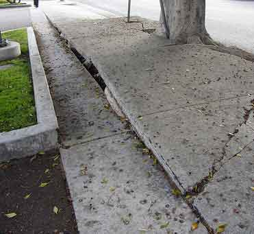 Costly Concrete Sidewalk Repairs Passed onto LA Owners
